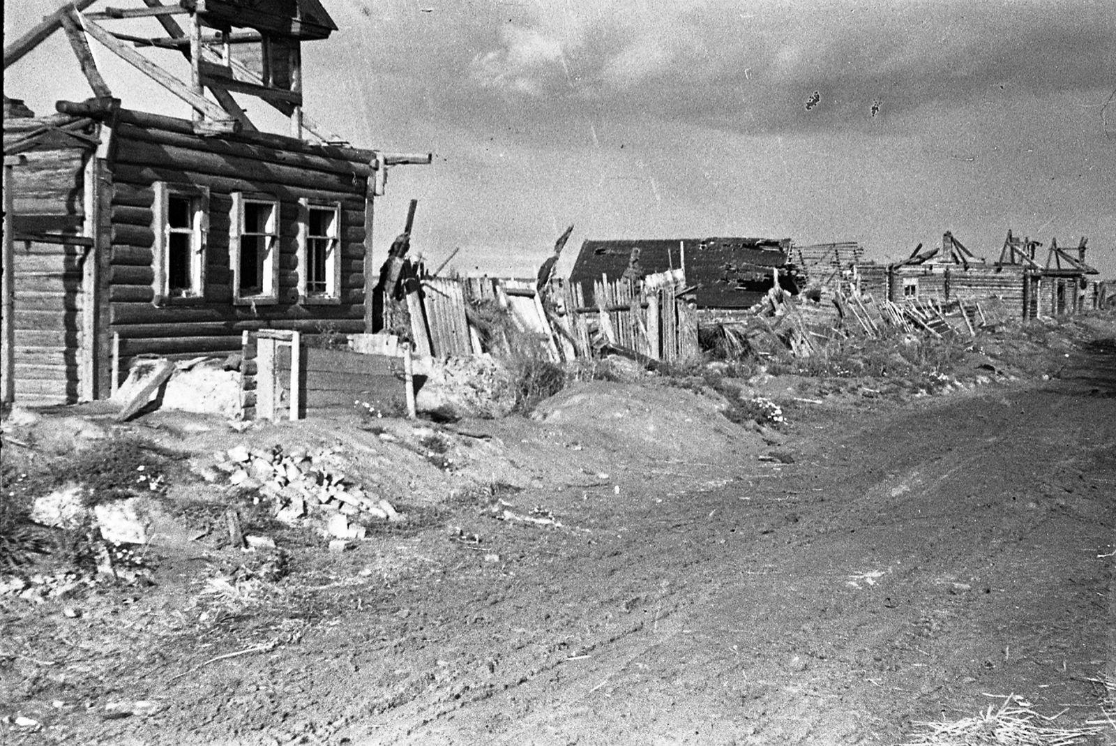 Фото немцы в калининской области
